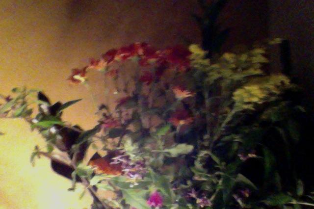 Flowerpic2