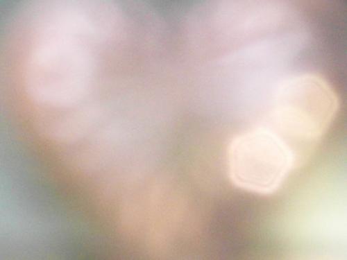 SAM_3782