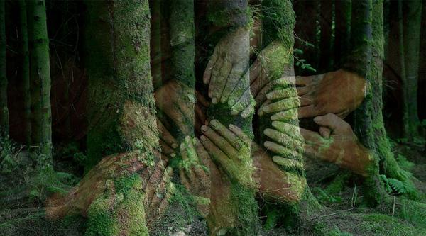 Environment1web